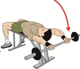 Squat weight training for triathletes -IronStruck.com  Straight
