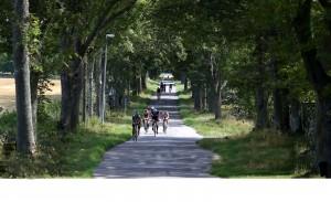 Andreas Linden Sweden Race
